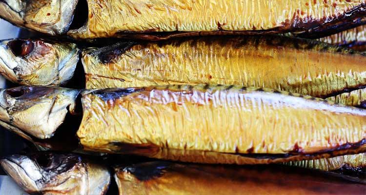 best canned mackerel
